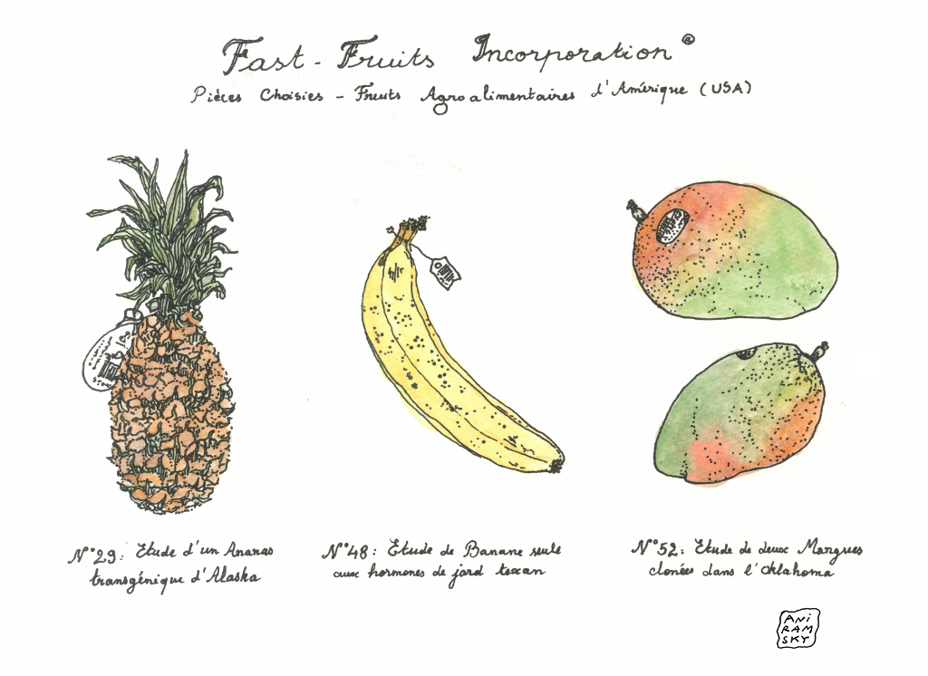 2014 Fast-Fruits Inc. (1024x746) copie